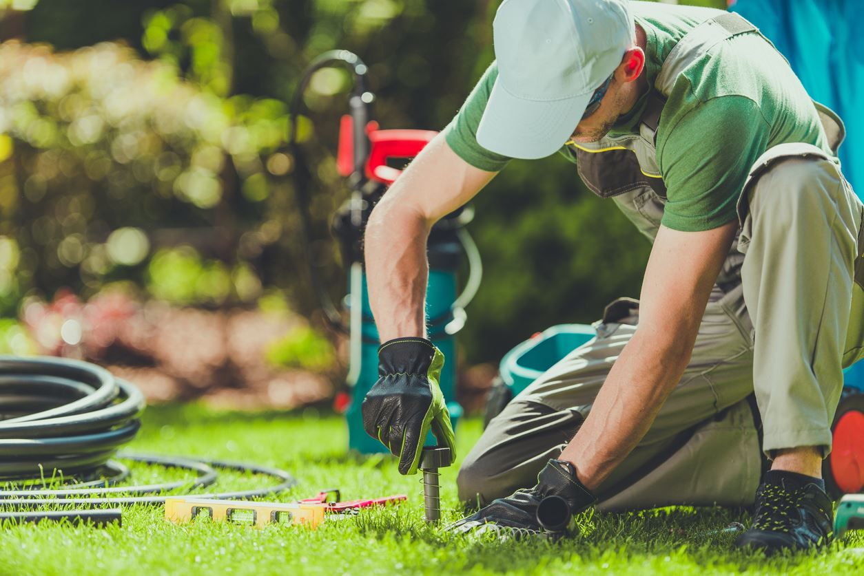 fixing sprinkler or irrigation system in yard with grass