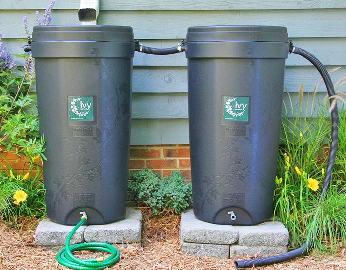 SHARED 2 Rain Barrels